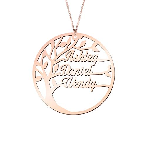 Personalized Family Name Necklace Rose Gold Plated